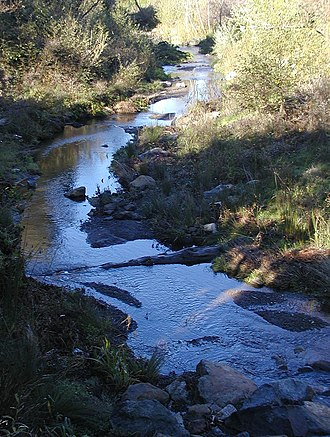 San Pedro Creek - San Pedro Creek, photo of segment of the Capistrano Fish Passage stream bed restoration project.