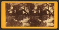 San Antonio River, by Doerr, H. A. (Henry A.), 1826-1885.png