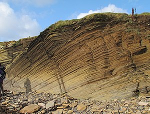 Orcadian Basin - Image: Sandwick Fish Bed