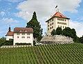 Schlosse Heidegg mit Weinberg.jpg