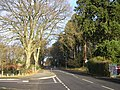 School Hill, Crowthorne - geograph.org.uk - 1116102.jpg