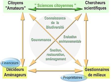 Graphe présentant les liens entre grands acteurs susceptibles d'être concernés par des programmes ou projets de sciences citoyenne. Ce sont des acteurs potentiels de la gouvernance de ces projets et de l'utilisation des résultats des études.