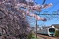 Seibu-Shinjuku-Line-HigashiFushimi-30000.jpg