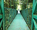 Selvatura Park Suspension Bridge.jpg