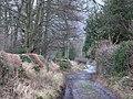 Shaws Lane (2) - geograph.org.uk - 630425.jpg