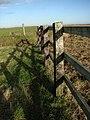 Short section of fence beside Fleet Dike - geograph.org.uk - 626320.jpg