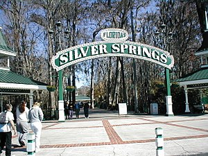 silver springs (attraction) wikipediaElectrical Project In The Old Historic District Of Ocala Florida #19