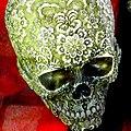 Skull on display - Flickr - Stiller Beobachter.jpg
