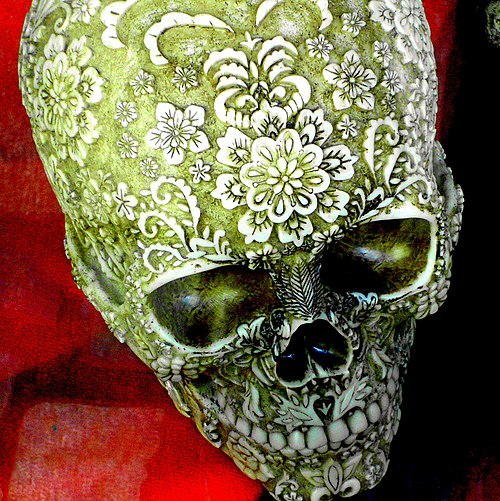 Skull on display - Flickr - Stiller Beobachter.jpg