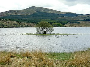 River Carron, Forth - The Strathcarron Reservoir.