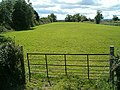 Small field - geograph.org.uk - 231145.jpg
