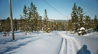 Bjurholm Municipality - Snowmobile ride in Bjurholm Municipality.