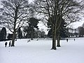Snowy Forfar (9).jpg