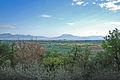 Solferino-Colline verso il lago di Garda.JPG