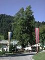 Sommerlinde in Lackenhof am Ötscher.jpg