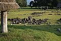 Special historic site Oyu Stone Circles , 特別史跡 大湯環状列石 - panoramio (16).jpg