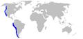 Squatina californica distmap.png