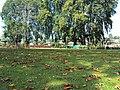 Srinagar - Shalimar Gardens 40.JPG