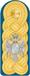 Vojvode epaulettes