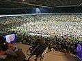 Stadio Benito Stirpe Frosinone Palermo 2-0 playoff final invasione e stirpe in tv.jpg