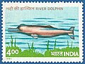 Stamp of India - 1991 - Colnect 164172 - Ganges River Dolphin Platanista gangetica.jpeg