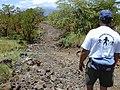 Starr-020422-0095-Myoporum sandwicense-habitat with Ted-Puu o Kali-Maui (23920297244).jpg