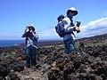 Starr-030716-0047-Dodonaea viscosa-plot monitoring with Kim and Forest-Kanaio-Maui (24009208864).jpg