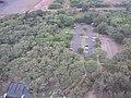 Starr-100218-1997-Cordia subcordata-habitat aerial view parking lot-Kanaha Beach-Maui (25008992375).jpg