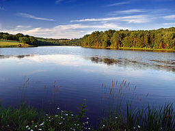 Stephen Foster Lake (2).jpg