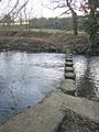 Stepping stones on the River Browney - geograph.org.uk - 332278.jpg