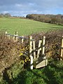 Stile near Toney's Farm - geograph.org.uk - 627874.jpg