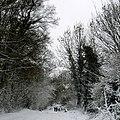 Stockwell Lane, Woodmancote 2006 - geograph.org.uk - 1097120.jpg