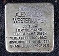 Stolperstein Bayreuther Str 41 (Schön) Alexander Westermayer.jpg