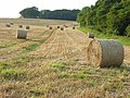 Straw bales above Piddletrenthide - geograph.org.uk - 545482.jpg