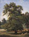 Study of a Tree LACMA AC1997.12.1.jpg