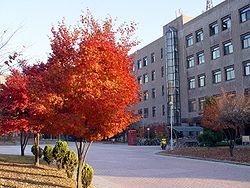 Sungkyunkwan University Suwon Engineering Building 2 Trees 1.JPG