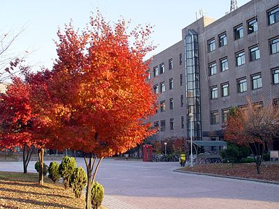 Sungkyunkwan University Sungkyunkwan University Suwon Engineering Building 2 Trees 1.JPG
