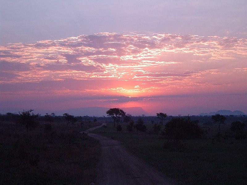 ไฟล์:Sunset in South African national park.jpg