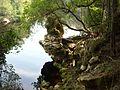 Suwanee River - panoramio.jpg