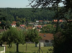 Svinařov, pohled na obec.JPG
