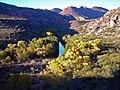 Sycamore Wilderness (4109374915).jpg