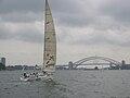 Sydney Harbour 2003.jpg