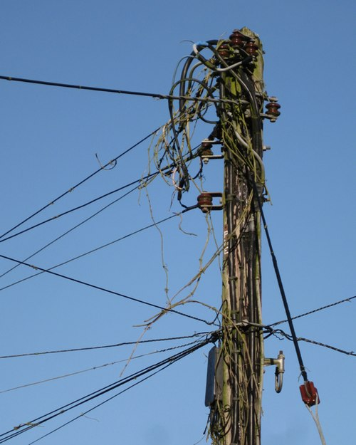 Telephone pole, Westwood - geograph.org.uk - 1621213