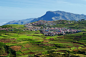Kodaikanal - Agriculture and tourism are two major parts of local economy. Above, terraced farming in Kodaikanal.