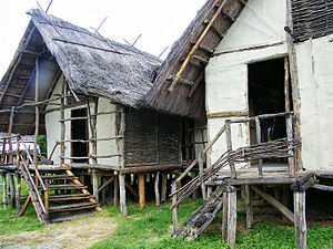 Terramare culture - Reconstructed Terramare houses