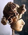 Testa maschile frammentaria, forse apollo, 27 ac-14 dc ca., dalla domus tiberiana.jpg