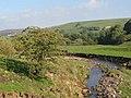 The River East Allen near Coatenhill - geograph.org.uk - 1016045.jpg