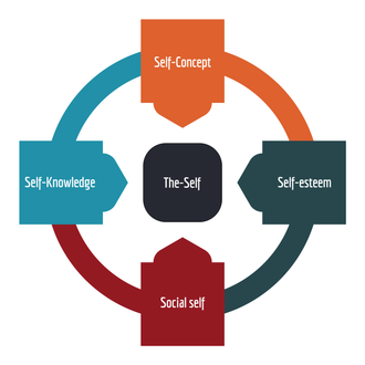 Self-concept - One's self-perception is defined by one's self-concept, self-knowledge, self-esteem, and social self.