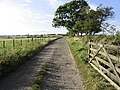 The farm road to Watch Hill - geograph.org.uk - 547515.jpg