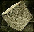 The groundwork of eugenics (1909) (14782975393).jpg